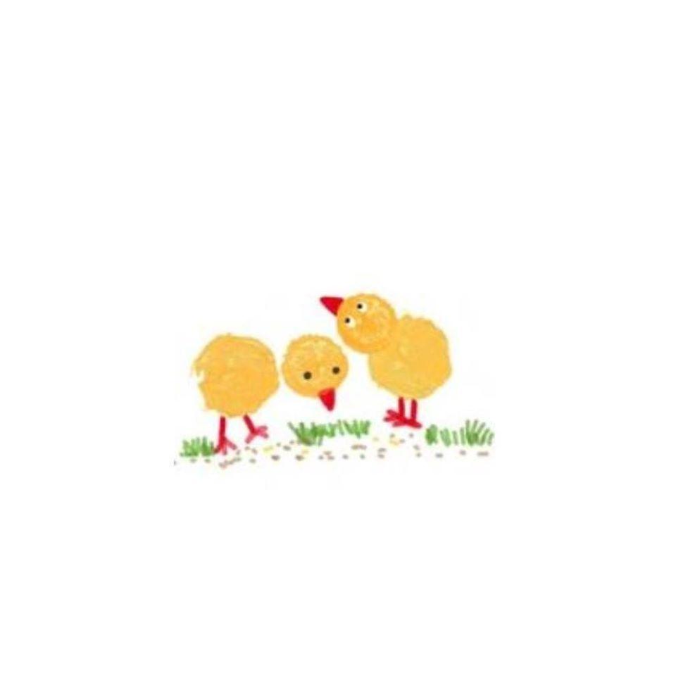 logo little poulettes serviettes hygieniques lavables